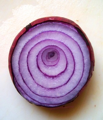 Red_onion_2