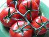 Vine_ripe_tomatoes